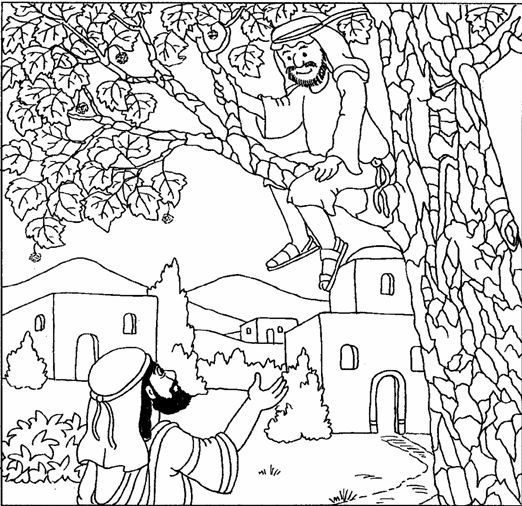 jesus talking to zacchaeus luke 19 coloring bible nt gospels pinterest preschool