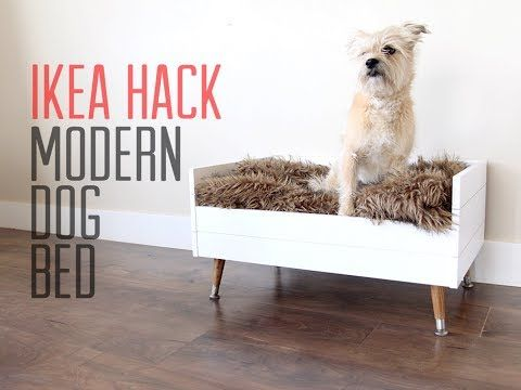 Ikea Hack Diy Modern Dog Bed Youtube Dog Bed Modern Dog