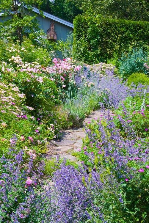 Cottage Garden Enchanting Gardens Pinterest Cottage