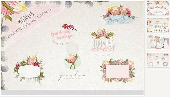 Нарисованные цветы и листья – Watercolour Protea Flower DIY Pack 558486