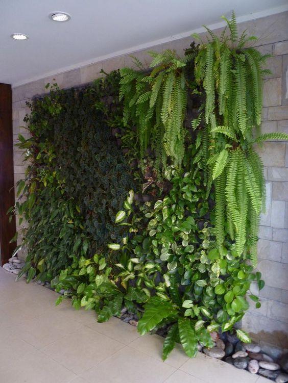 Fitorremediacion del aire interior jardines verticales - Jardines y plantas ...