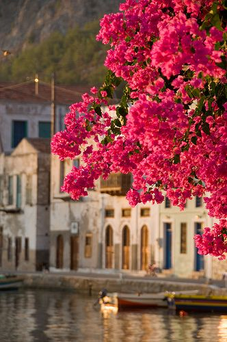 Kastelorizo, Greece by Adrian D..., via Flickr