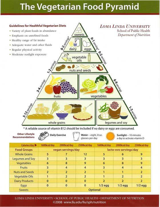 Znalezione obrazy dla zapytania loma linda university guidelines for healthful vegetarian