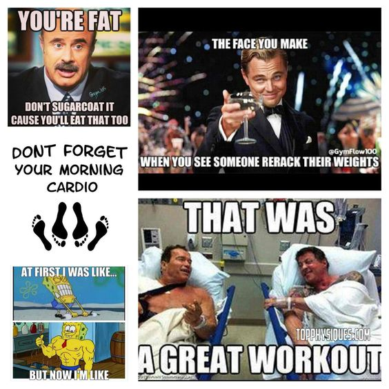 Gym and weight lifting humor | *Gym Funnies | Pinterest | Weight ...