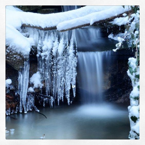 Amazing one by qshenbagavalli.goral #landscape #contratahotel (o) http://ift.tt/1S1K3Gw #stuttgart #frühling#nala_rinaldo #love #pictures #magicpict #sonne #could #blume #germany #landschaft #jaworskyj #wald #wasser #natur #reise #skyporn #berlin #nature_shooters #baum#nice#schön ##sterne#instagood#postwhatsuitsyourmood#l
