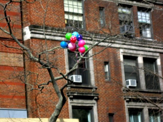 balloons up a tree: part of a series of photographs of balloons. balloons up a tree uws nyc by Sookie Tex on 500px