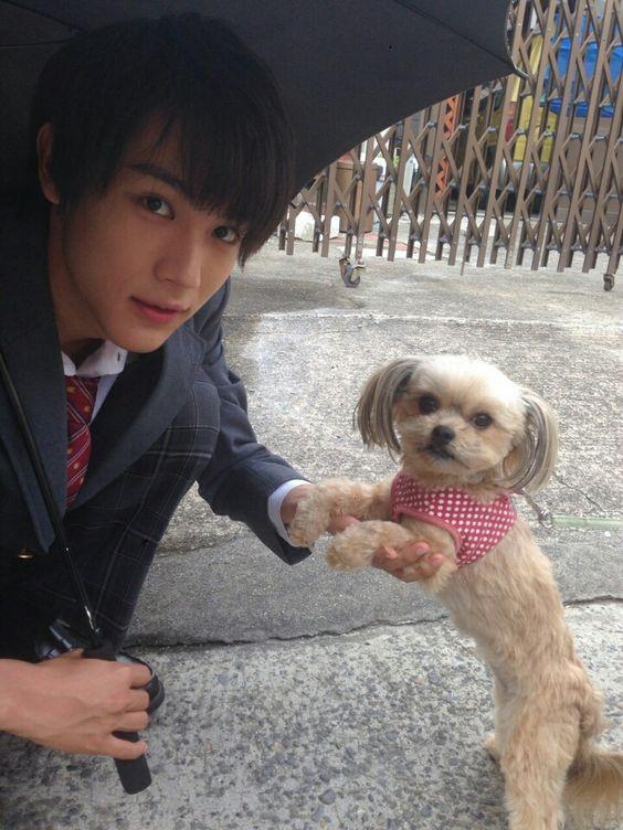 犬と遊ぶ中川大志