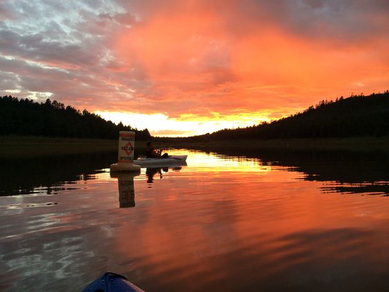 D fishing and portal on pinterest for Fishing in flagstaff