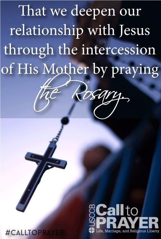 54 day rosary novena pdf