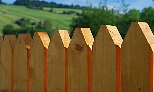 5 types of fencing to consider for your backyard - Kudzu.com