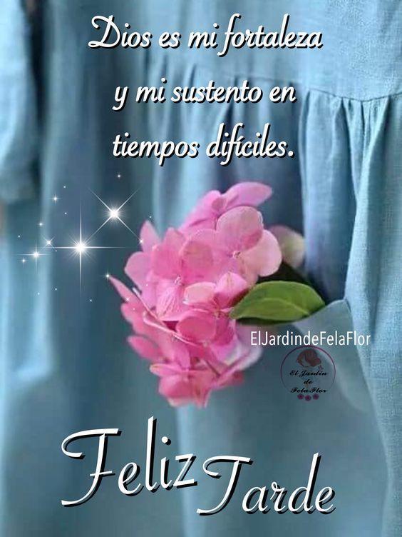 Imagenes De Buenas Tardes Bonitas Gratis Con Frases Amor