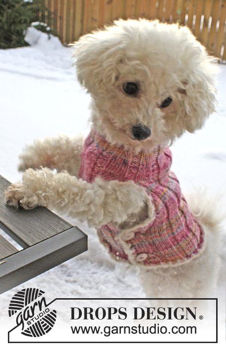 Chaleco DROPS para perro tejido en \u201cFabel\u201d y \u201cBaby Merino\u201d, con orillas en \u201cSymphony\u201d. Talla XS \u2013 L. ~ DROPS Design