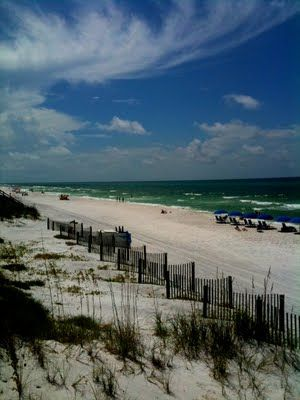 Seaside, Florida has sugar white beaches. One of my favorite places!  Bud and Alley's the best perch!