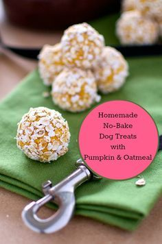Homemade No-Bake Dog Treats Pumpkin Oatmeal. (Maybe roll in unsweetened coconut instead of oats.)