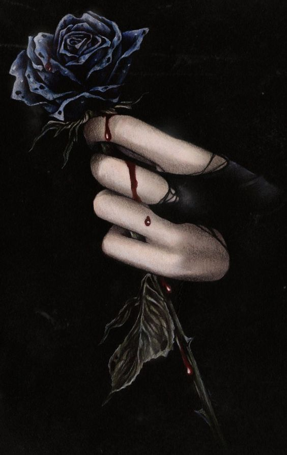 pale hand holding black rose blood dripping down onto fingers                                                                                                                                                      Más