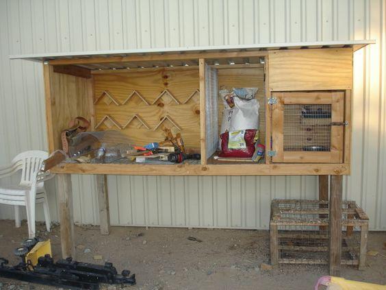 Free pigeon loft plans birmingham roller pigeons for for Pigeon coop ideas