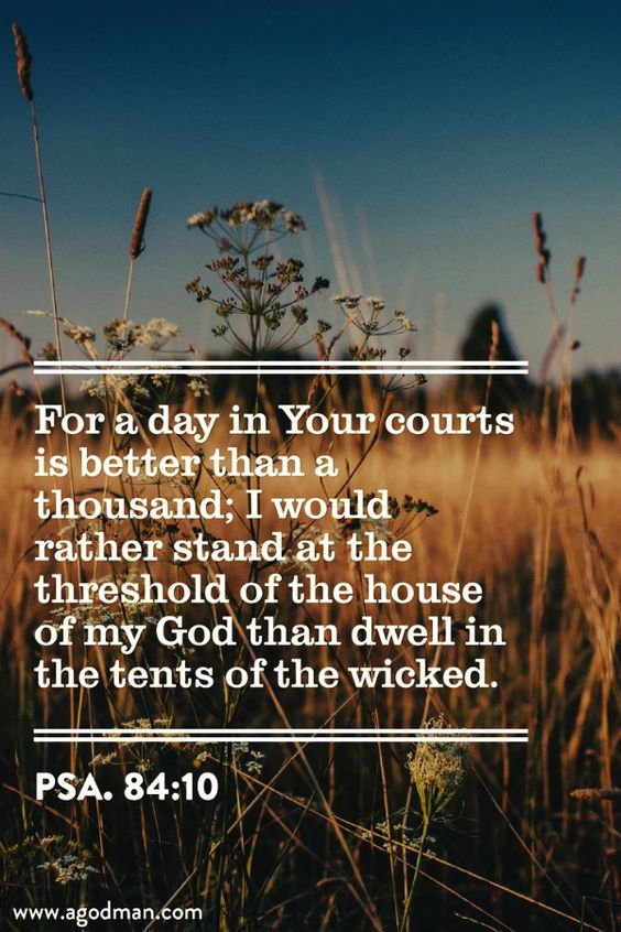 Psa. 84:10 For a day in Your courts is better than a thousand; I would rather stand at the threshold of the house of my God than dwell in the tents of the wicked. Bible Verse quoted at www.agodman.com