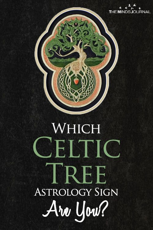 Which Celtic Tree Astrology Sign Are You Celtic Tree Celtic