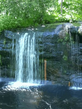 Lovely Waterfall Nature Gif