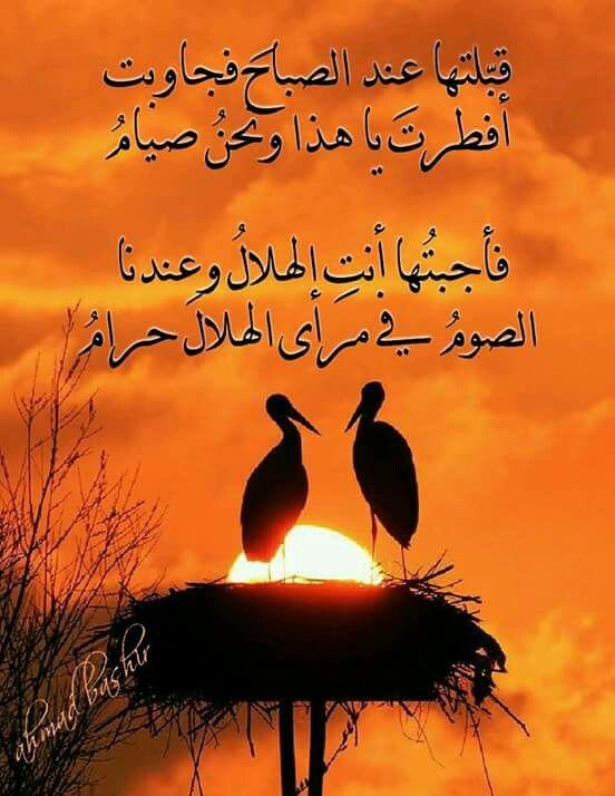 Pin By اهل البيت عليهم السلام On روائع الحكمة Beautiful Words Arabic Quotes Arabic Words