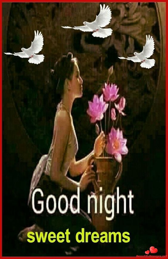 Good Night Nice Images for Facebook and Whatsapp - BeutifulImages.net