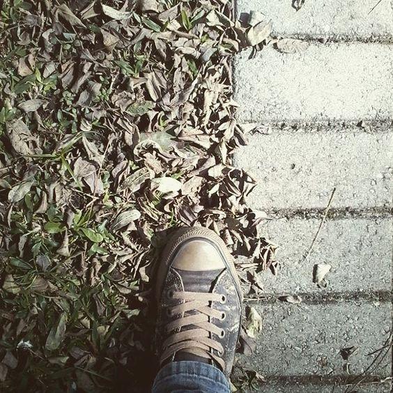 Pisando em folhas secas