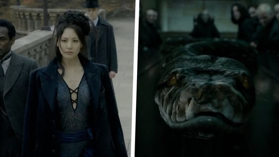 Why Nagini Became Voldemort S Greatest Servant Fantastic Beasts Theory Fantastic Beasts Fantastic Beasts And Where Harry Potter Theories