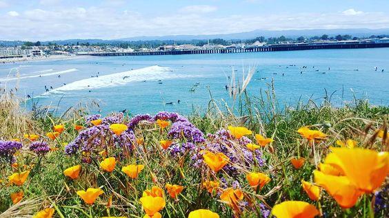 Santa Cruz CA: #blessed by lydiavina