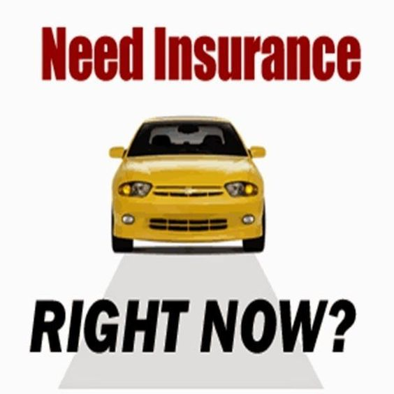 buy auto insurance online instantly