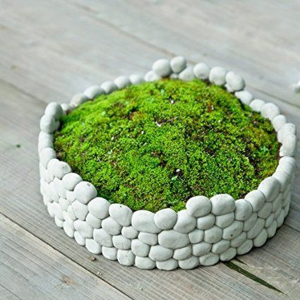 SUN-E Succulent Decorative Cement Grey Rock Wall Design Plant Holder / Garden Stone Flower Planter