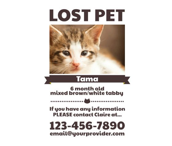 Download this Lost Pet Flyer Template and other free printables from
