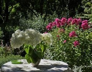 Cómo hacer un herbicida en casa