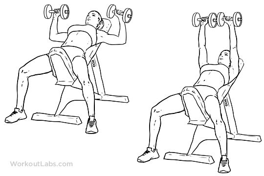 incline dumbbell press for women - Google Search | 3 days gym ...