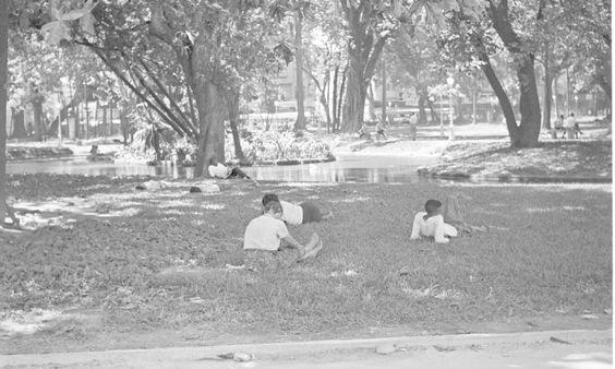Deixar à sombra sobre a grama fazia parte do hábito dos cariocas na década de 50; imagens de cotidiano da cidade durante o verão estarão em mostra a partir de quarta-feira, no Centro Cultural Justiça Federal Foto: Agência O Globo