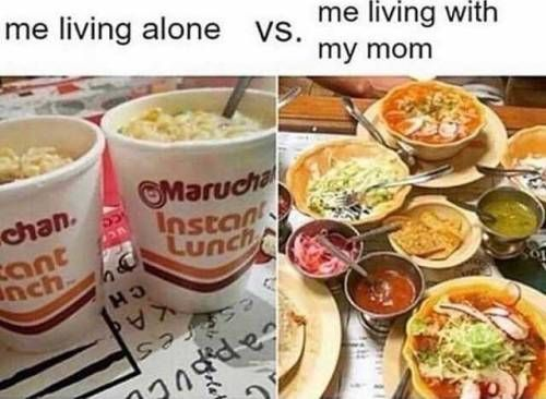 33 Of Today S Best Pics And Memes Mexican Memes Mexican Jokes Food