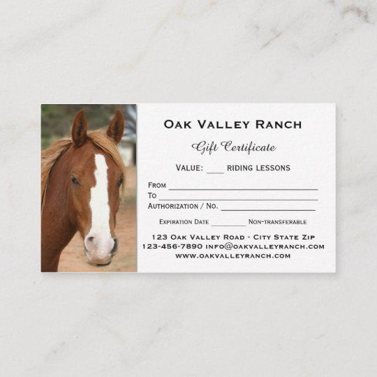 Horse Riding Lessons Gift Certificate Template Zazzle Com Riding Lessons Equestrian Outfits Horses