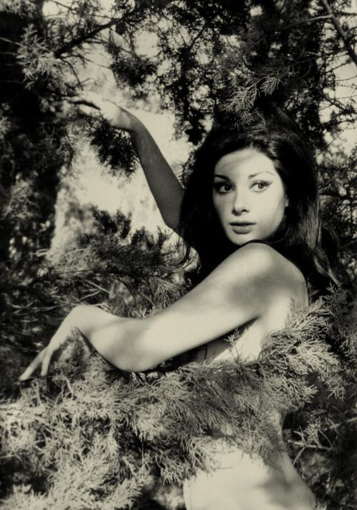 choicecheesecake:  And in black and white. Edwig Fenech
