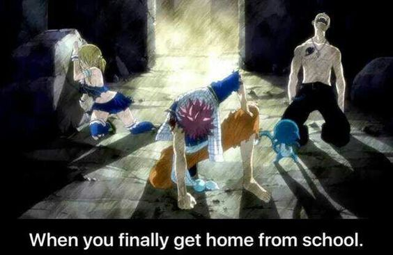 When you finally get home from school, funny, text, Lucy, Happy, Natsu, Gray; Fairy Tail