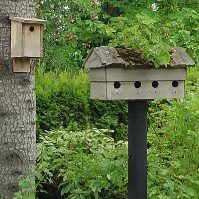 is your bird house securely mounted different types