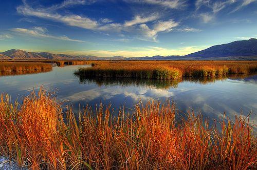 so pretty...: Beautiful Autumn, Autumn Scenery, Beautiful Scenery, Beautiful Fall, Beautiful Places, Fall Foliage, Autumn Beautiful, Fall Photos