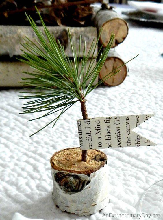 Birch+Pine+Sapling+Favors+::+Birch+Branch+Winter+Woodland+Tablescape+::+AnExtraordinaryDay.net: