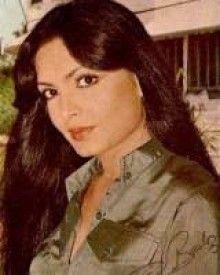 Parveen Babi Biography, Parveen Babi Profile - Filmibeat
