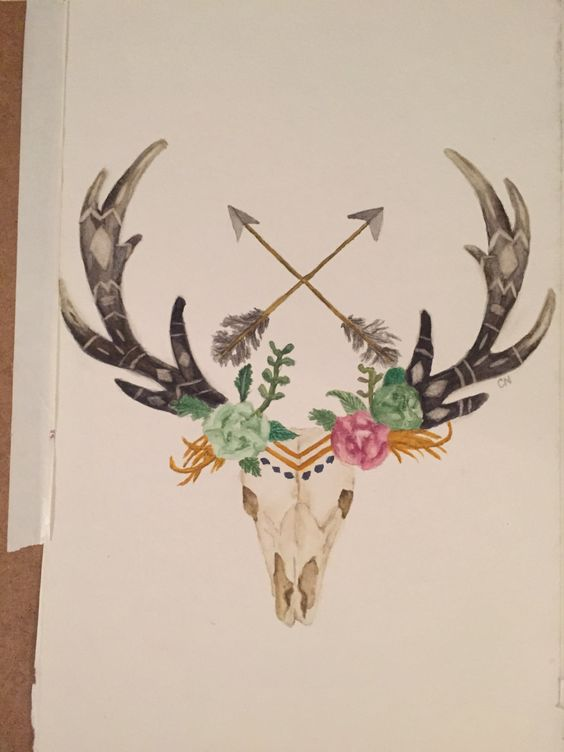 Deer Skull Watercolor Www Imgkid Com The Image Kid Has It