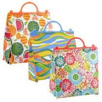 Bulk Reusable Insulated Lunch Bags with Plastic Handles at DollarTree.com
