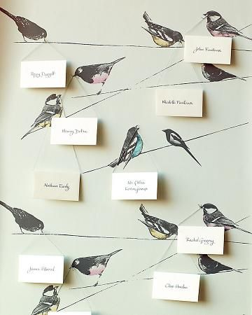escort cards on bird wallpaper