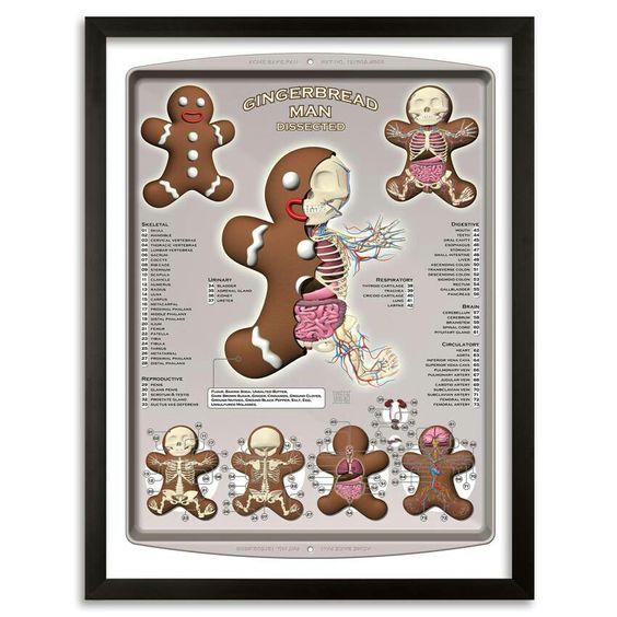 Gingerbread anatomy print www.moistproduction.com