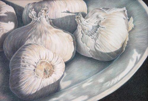 """""""Garlic V"""" Colored pencil drawing."""