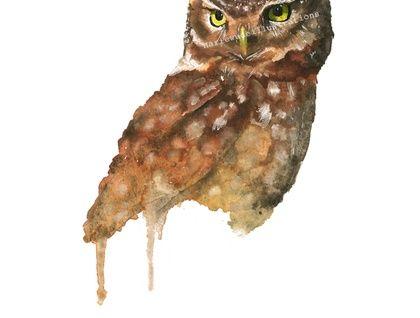 Hand drawn Owl Print