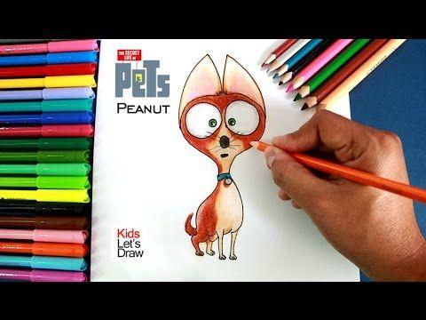 Cómo dibujar a Peanut (La Vida Secreta de tus Mascotas) | How to draw Peanut (The Secret Life of Pets)