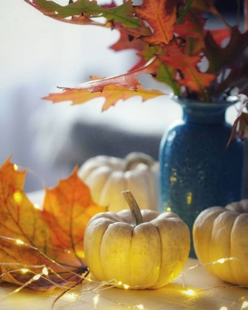Pin By Stacy L On Tara Fall Decor Favorite Holiday Heating And Cooling
